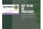 DRIED AND SORTED THYME OF PROVENCE PGI